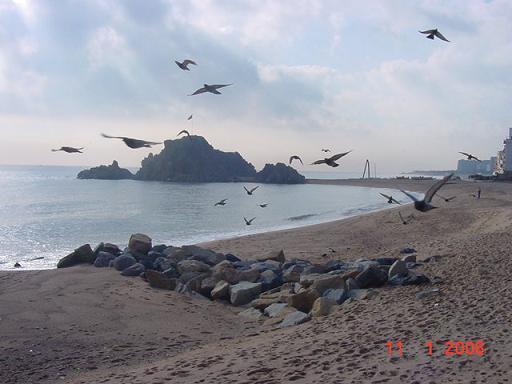 Invierno. Playa de Blanes. La Palomera. ( 11.1.06, por la mañana )